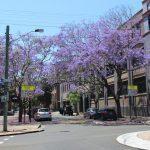 Boende på AIT i Sydney på Blueberry.nu