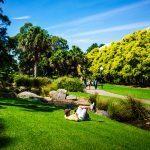 Rast i gräset på campus i Wollongong
