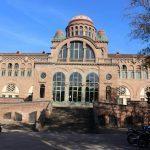 Studera i Barcelona på UAB på blueberry.nu