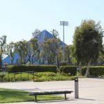 Plugga på CSU Long Beach på blueberry.nu