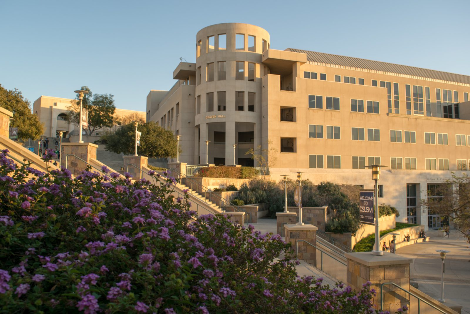 Csu San Marcos >> California State University San Marcos - Blueberry College