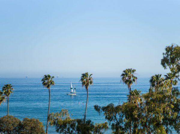 Santa Barbara City College palmer havet