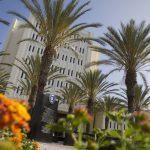 campus CSU Fullerton palmer