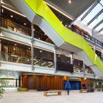 Plugga i Nya Zeeland på University of Auckland på blueberry.nu