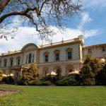 Utlandsstudier i Nya Zeeland på University of Auckland på blueberry.nu