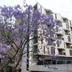 Boende på UNSW i Sydney på blueberry.nu