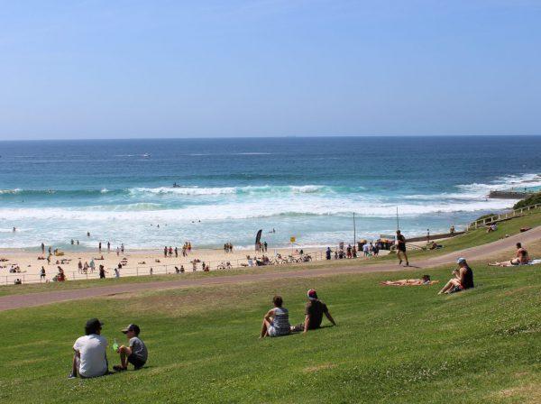 Studera i Sydney & Bondi på blueberry.nu