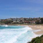 Studera utomlands i Sydney på blueberry.nu