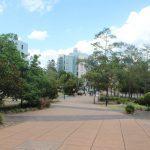 Plugga i Australien på University of Queensland på blueberry.nu