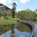 Utbildningar på University of Queensland i Australien på blueberry.nu