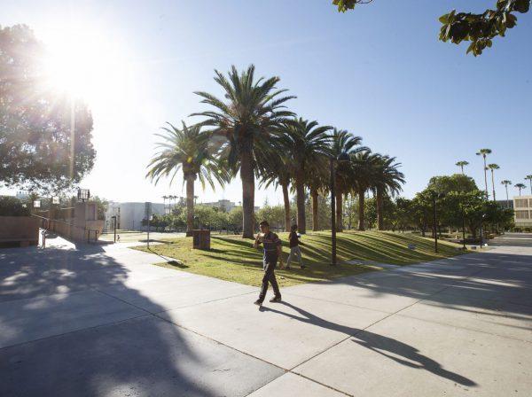 Ta chansen att studera på California State University, Northridge i närheten av LA.