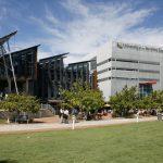 Studera på University of the Sunshine Coast i Australien på blueberry.nu