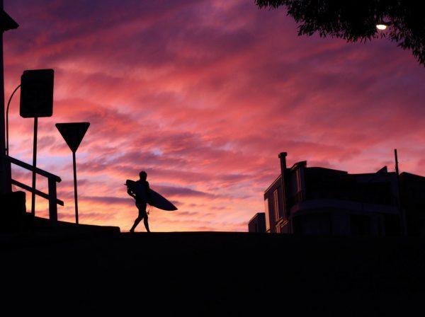 gryning Sydney Australien