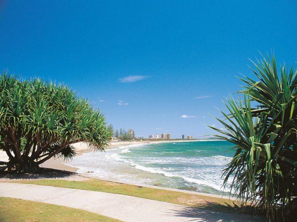 Ansök till TAFE Queensland i Australien på blueberry.nu