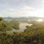 Studera på Borneo