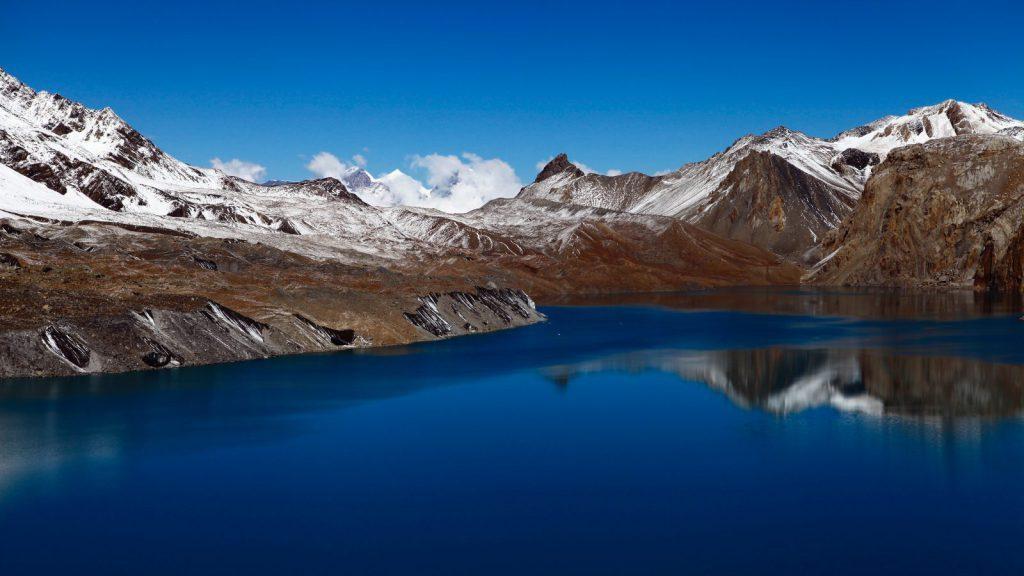 studera på APM via Blueberry - blue mountain