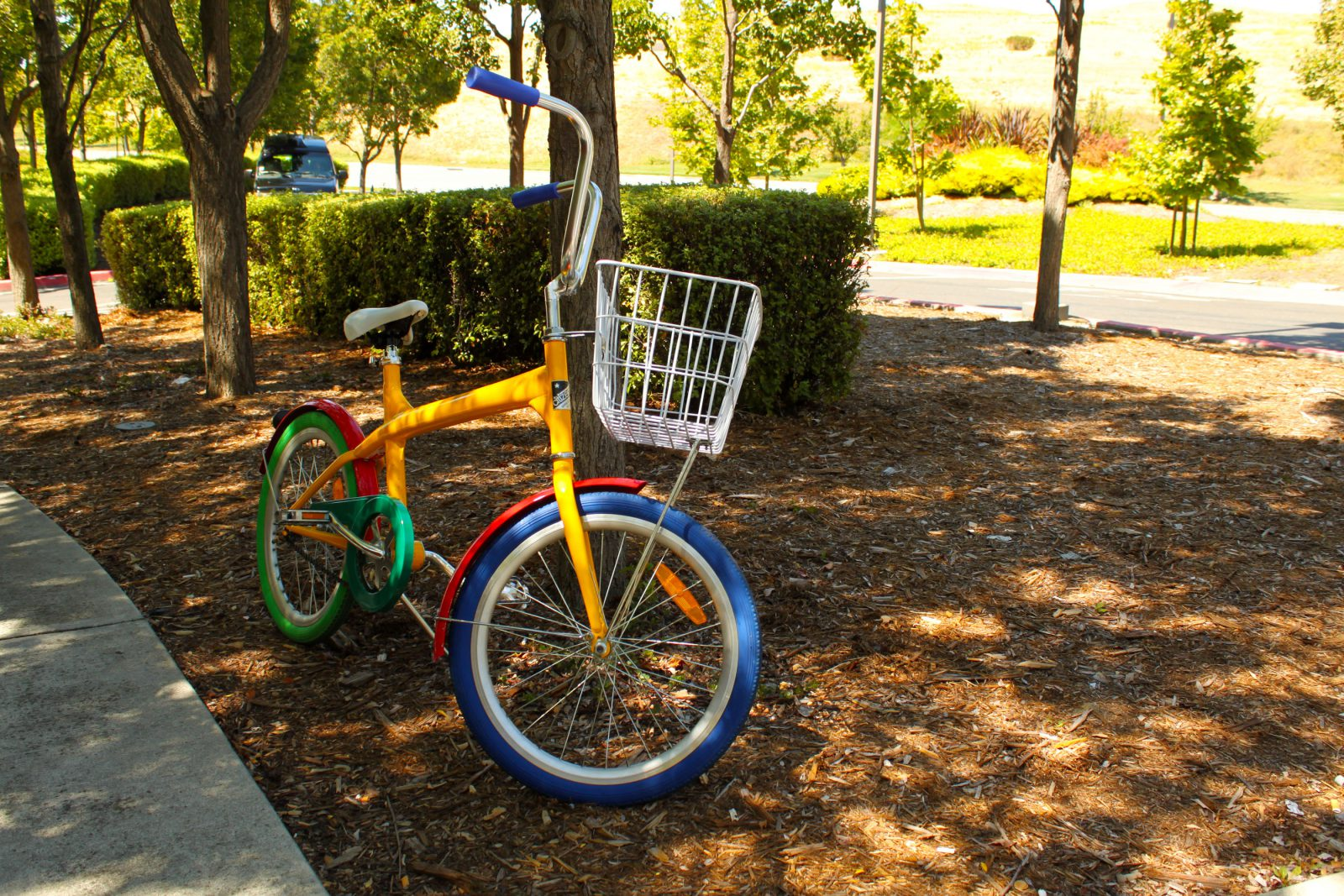 silicon valley, google, bike, studera utomlands, sfsu, san francisco state university