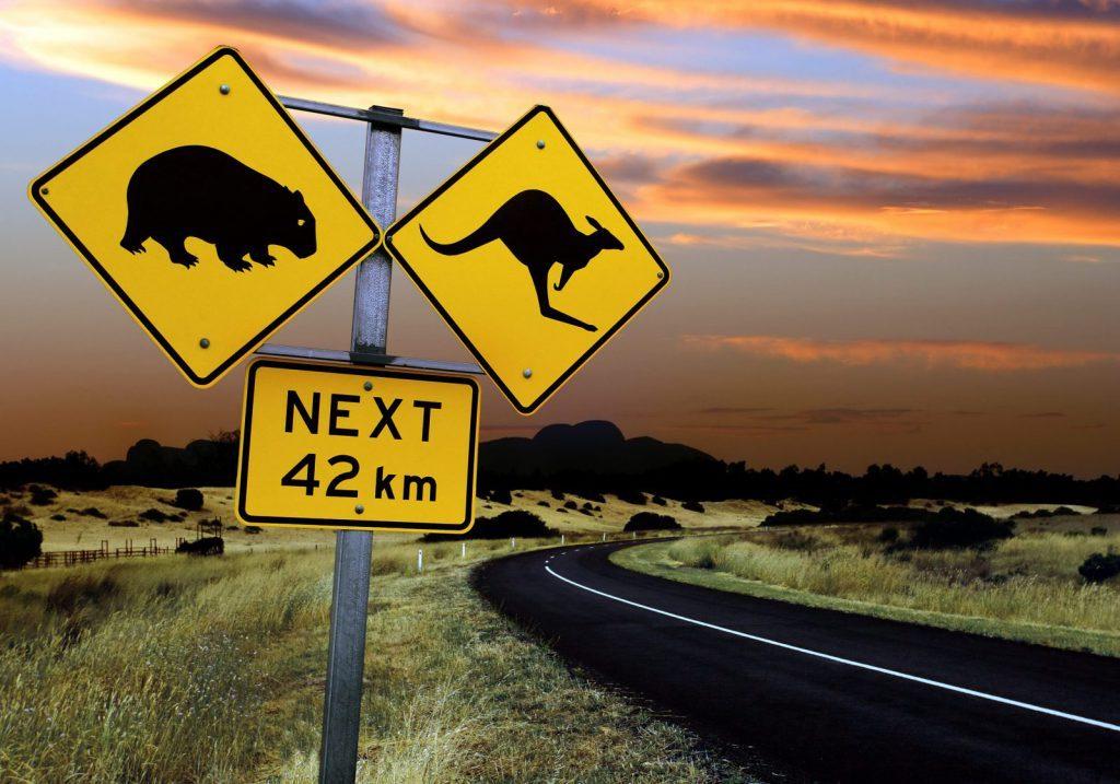 Studera utomlands, Australien, UNSW Sydney, walk about