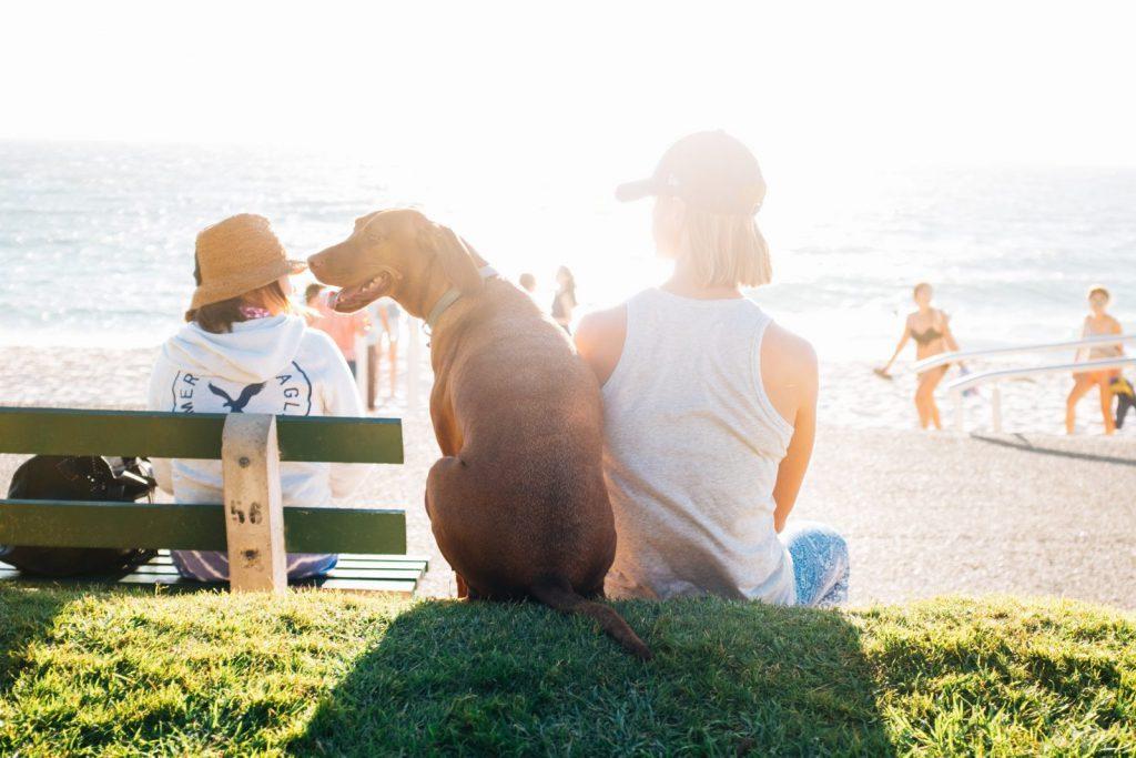 Kille och hund på stranden i Perth