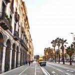 Gata i Barcelona