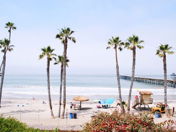 Studera utomlands i USA, California State University Fullerton, strand, Orange County, palmer,