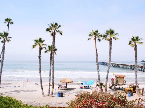 Studera utomlands i USA, California State University Fullerton, strand, Orange County, palmer,