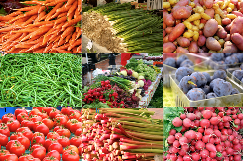 Studera i Wisconsin och ät närodlad bra mat varje dag. Ansök via Blueberry.nu idag för att studera på University of Wisconsin-Madison.
