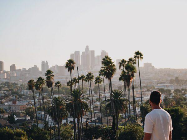 KIlle blickar ut över palmer och skyskrapor