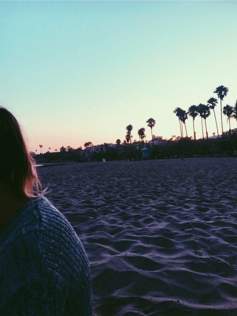 Palmer i solnedgången Santa Barbara